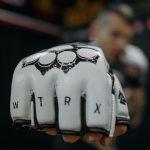 """MMA-Handschuhe von """"White Rex"""""""